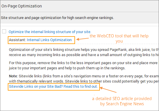 webceo-diy-seo