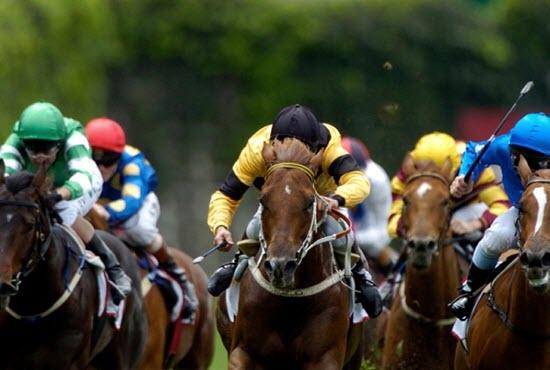 RacingWinners