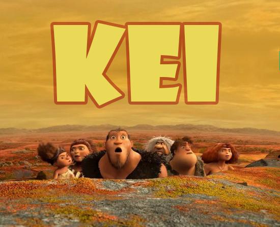 kei-fossil