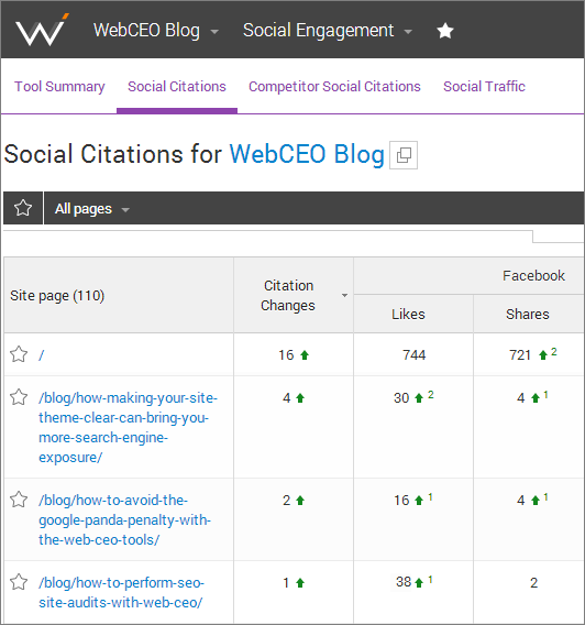 Web CEO Social Citation report