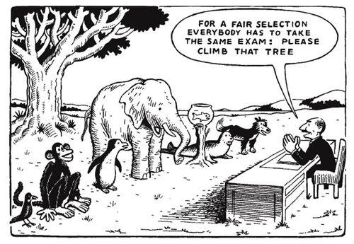 fair-test